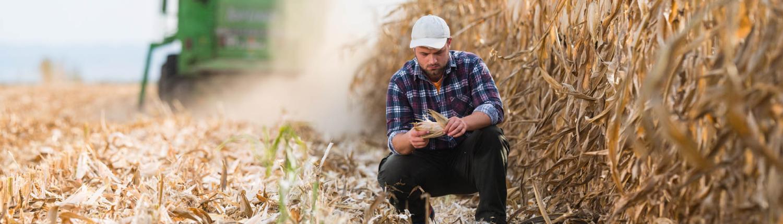 Bliv Landbrugsuddannet - uddannelseretning